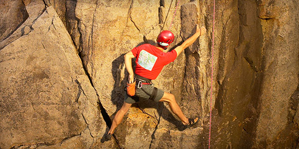 Is Your Business Resilient Enough…