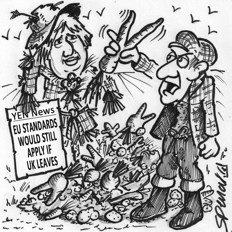 YEN Cartoon: You Mean I Still Won't Be Able To Off-Load All This Wonky Veg?