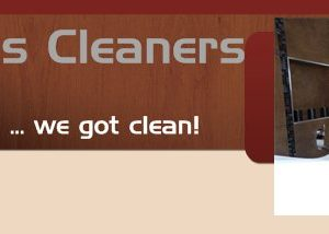 Clutterbugs Cleaners