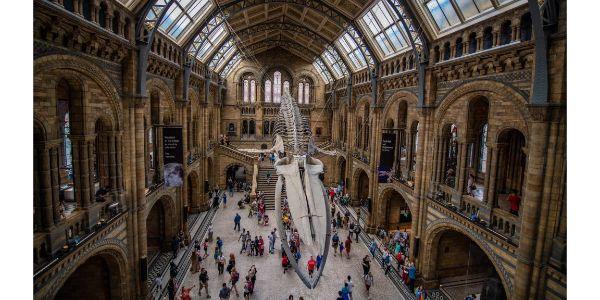 Top 10 Virtual Museum Tours